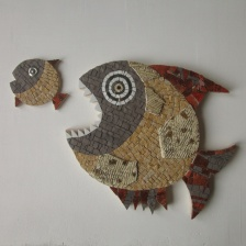 Pesce grande (36 cm) mangBiia pesce piccolo (12 cm)