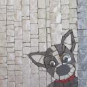 boston terrier, mosaic dog