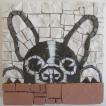 Mosaico Boston Terrier