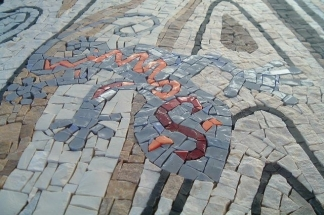 Geko grigio 40x150, detail
